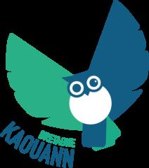 hibou vert bleu logo kaouann